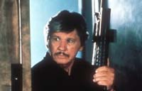 Death Wish 4: The Crackdown Picture