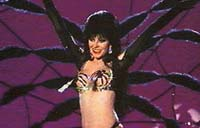 ELVIRA, Mistress of the Dark Picture