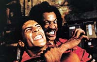 The Last Dragon Picture